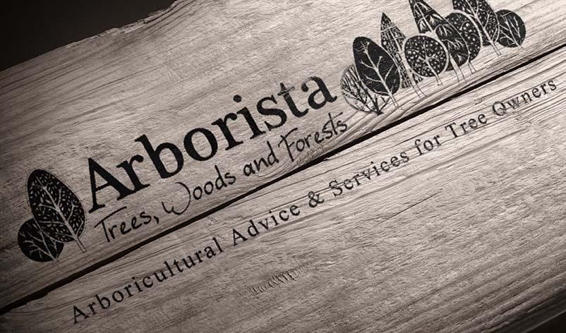 Arborista